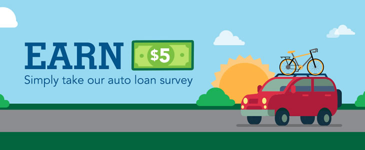 Auto loan survey
